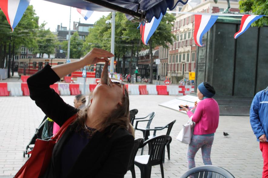 Vlaggetjesdag 2014: A Fish Festival in Scheveningen, The Netherlands